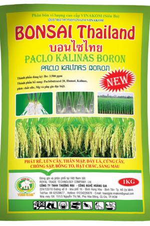 BONSAI Thái Lan (1 KG)