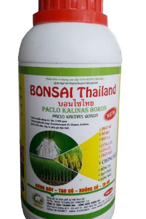 BONSAI Thái Lan (500ml)